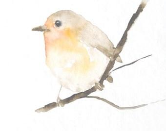 Original Bird Watercolor Painting Robin Redbreast