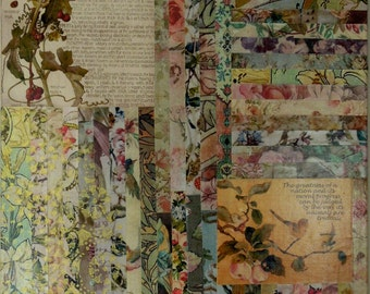Botanical Ephemera Collage