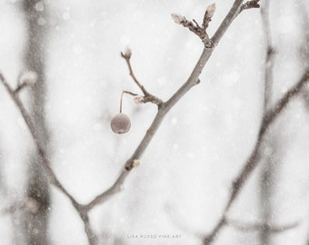 Grey Winter Print or Canvas Wrap, Cool Grey Art, Nature Photography, Snow Picture, Crisp White Wall Art, Snow Decor, Holiday Decor, Silver.