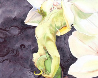 Emergence I - Matted Digital Print of Art Nouveau Flower Faerie in White Orchid Watercolor Painting - 11x14 inches