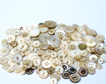 Antique Shell Buttons: 200 White Shell and Glass Buttons, Hand Carved Ivory Shell Buttons