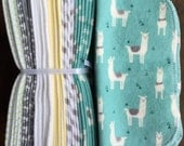 Cloth Baby Wipes. Starter Kit - 3 dozen. SALE 20% off. Eco friendly reusable cloth diapering wipes. Teal Lhamas