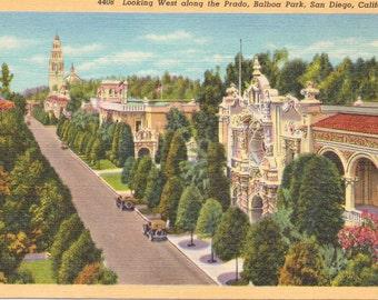 Balboa Park, San Diego, California, the Prado - Linen Postcard - Unused (ZZ)