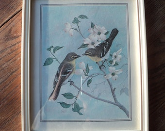 Vintage Lithographic Print of 2  Yellow Throated Vireo Birds  on a Dogwood Branch by The Artist Saron in Good Condition