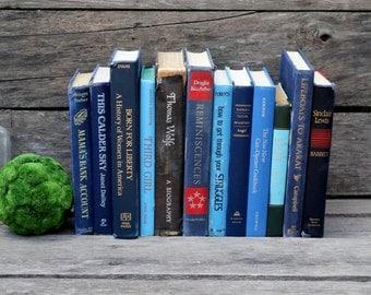 Set of 12 Vintage Books - Antique Book Decor - Photo Props - Wedding Decor - Centerpieces - Blue Set - Blue Navy Brown - Thomas Wolfe