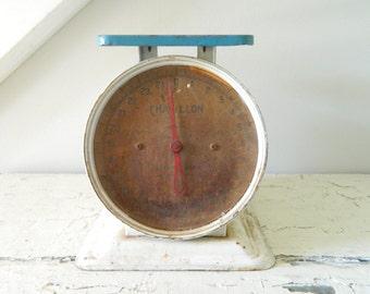 Vintage Kitchen Scale Metal White Blue Chatillon