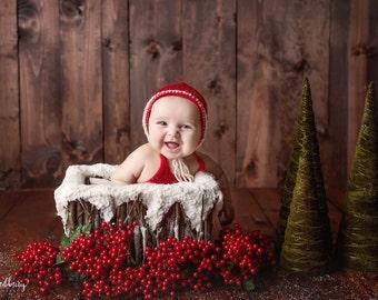 Snowy Crate Prop, Christmas Photo Prop, Newborn Photo Prop, Basket Prop, Photography Prop, Bowl Prop, Organic Prop