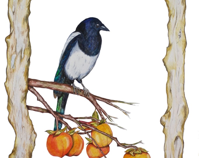 Limited edition (10) Magpie on a Persimmon Branch, Feng Shui Symbol Nest Home Career Love, Korea National Bird, Bird Art, Bird Print