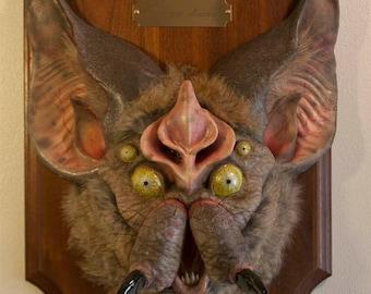 Chiroptera Araneae (BatSpider, natural)