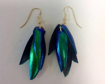 Unique Beetle Wing Earrings