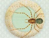 Custom listing for Elizabeth, spider melamine plate
