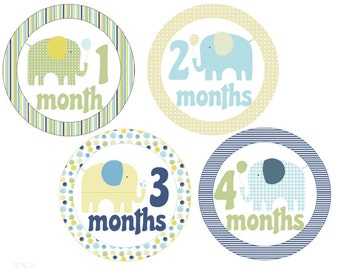 BIG SALE Monthly Baby Stickers Elephants Monthly Stickers Baby Boy Stickers Milestone Stickers Baby Monthly Stickers Boy Month Stickers