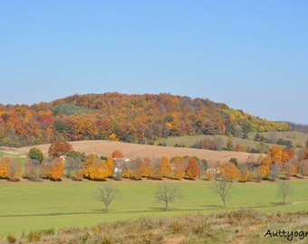 Gorgeous Fall Foliage in the Shenandoah Valley, Virginia