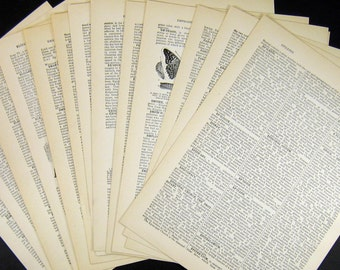 40 Vintage Encyclopedia Book Pages - Old Book Paper - Letterpress Typography - Paper Packet