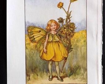 Cicely Mary Barker C1940 Vintage Flower Fairy Print. The Buttercup Fairy