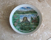 Wyoming souvenir plate - vintage Wyoming plate - Devil's Tower plate - trinket dish - collectible plate - state plate - mini plate