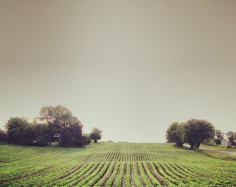 5x5 Wisconsin Landscape photograph by Natalie Jo Wright
