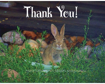 Bunny Thank You Cards - Greeting Cards - Note Cards. Includes White Envelopes. Blank Inside.