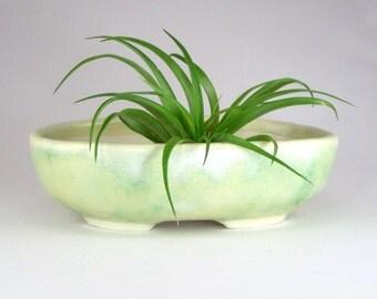 Pale Green Oval Bonsai Pot, Succulent Planter, Hand Built Shallow Flower Pot, Spring Green Kusamono, Cactus Pot, Shohin Bonsai 05-16-16