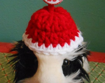Tiny Valentine Hat for Guinea Pigs, Kisses 25 Cents Hat,