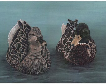 Synchronised Swimming - Mallard Ducks - A4 Art Print