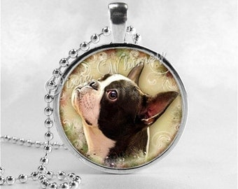 BOSTON TERRIER Necklace, Boston Terrier Dog, Boston Terrier, Boston Terrier Jewelry, Dog Necklace, Dog Jewelry, Dog Charm, Dog Breed,