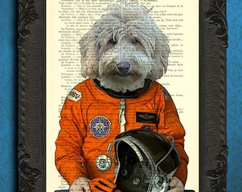 Astronaut labradoodle poster, goldendoodle in orange space suit, moon rocket space room decor, dog lover gift idea art print