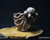 Bonsai  Octopus pot No 3 , sculpture 03/2016