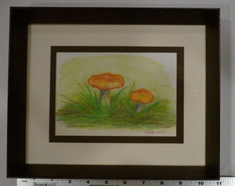 """Watercolor Pencil Painting of Mushrooms - Framed, One of a Kind, Original - 10.75"""" x 8.75"""""""