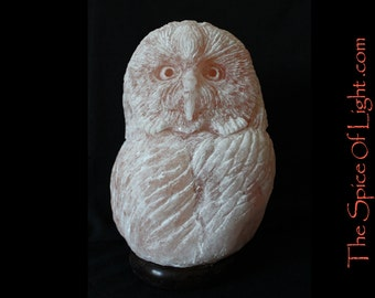 SALE!!  Short Eared Owl, Himalayan salt lamp salt sculpture