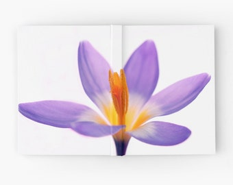 Purple Crocus Flower Journal Book, Floral Blank Sketchbook for Artist, Lined Diary, Ruled Lined Spiral Notebook, Nature Hard Cover Book