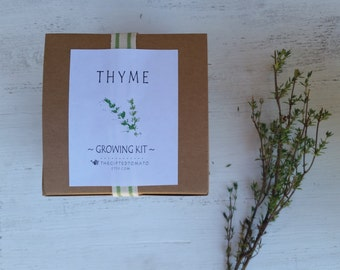 English Thyme Growing kit potted herb garden thyme plant thyme seed gift for mom herb seed starting kit creeping thyme kitchen decor herbal