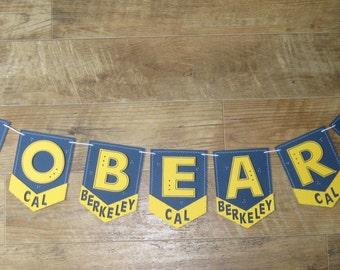 Cal Berkeley Go Bears Banner