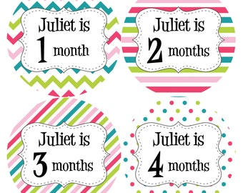 PERSONALIZED Baby Girl Month Stickers Monthly 12 Month Sticker Monthly Baby Stickers Baby Shower Gift Photo Prop Milestone Sticker 504
