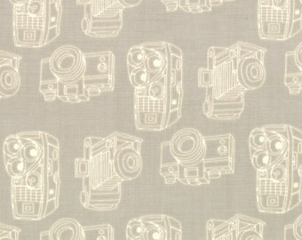 Cameras in Pavement by Eric & Julie Comstock from the Twenty Three collection for Moda