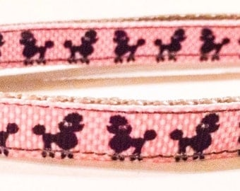 Pretty little poodle dog collar