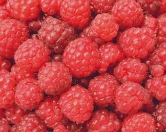 Red Fruit PDF Cross Stitch Pattern