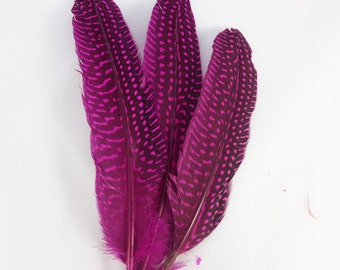 10 pc's x 20cm Magenta Guinea Spotted Feathers