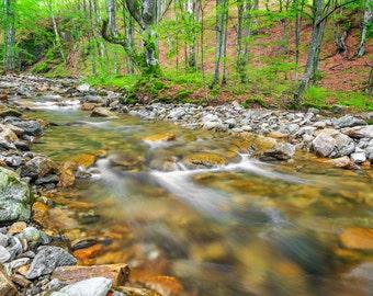 Nature Photography Landscape Photo Natural Home Decor River Photography Photo Prints