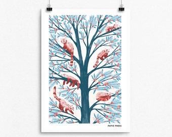Red Pandas  - A4 Artists Print