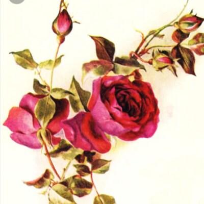rosebudsvintage