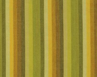 MULTI STRIPE  LIME Woven wmultix.limex  by  Kaffe Fassett fabric sold in 1/2 yard increments