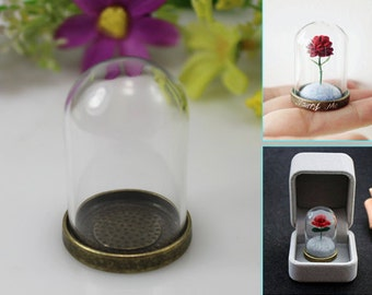 Little Prince Rose,clear glass globe,Glass dome pendant, rose in glass, Handmade Birthday Gift, DIY Material Package