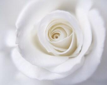Rose print, flower photography, white wall art, powder room, white bathroom decor, modern artwork, floral art print, white rose neutral art
