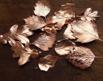 Real metal leaves, random leaf, electroformed copper leaves, electroforming,botanical jewelry,discount item,gift under 10,copper electroform