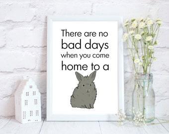 Lionhead bunny gift for friend, Bunny lover gift, rabbit lover gift, rabbit owner, Pet owner, rabbit Home Décor, rabbit, bunny, PRINT ONLY