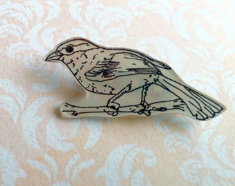 Hand Drawn Bird Shrink Plastic Brooch, One of a Kind Brooch - Ready to Ship