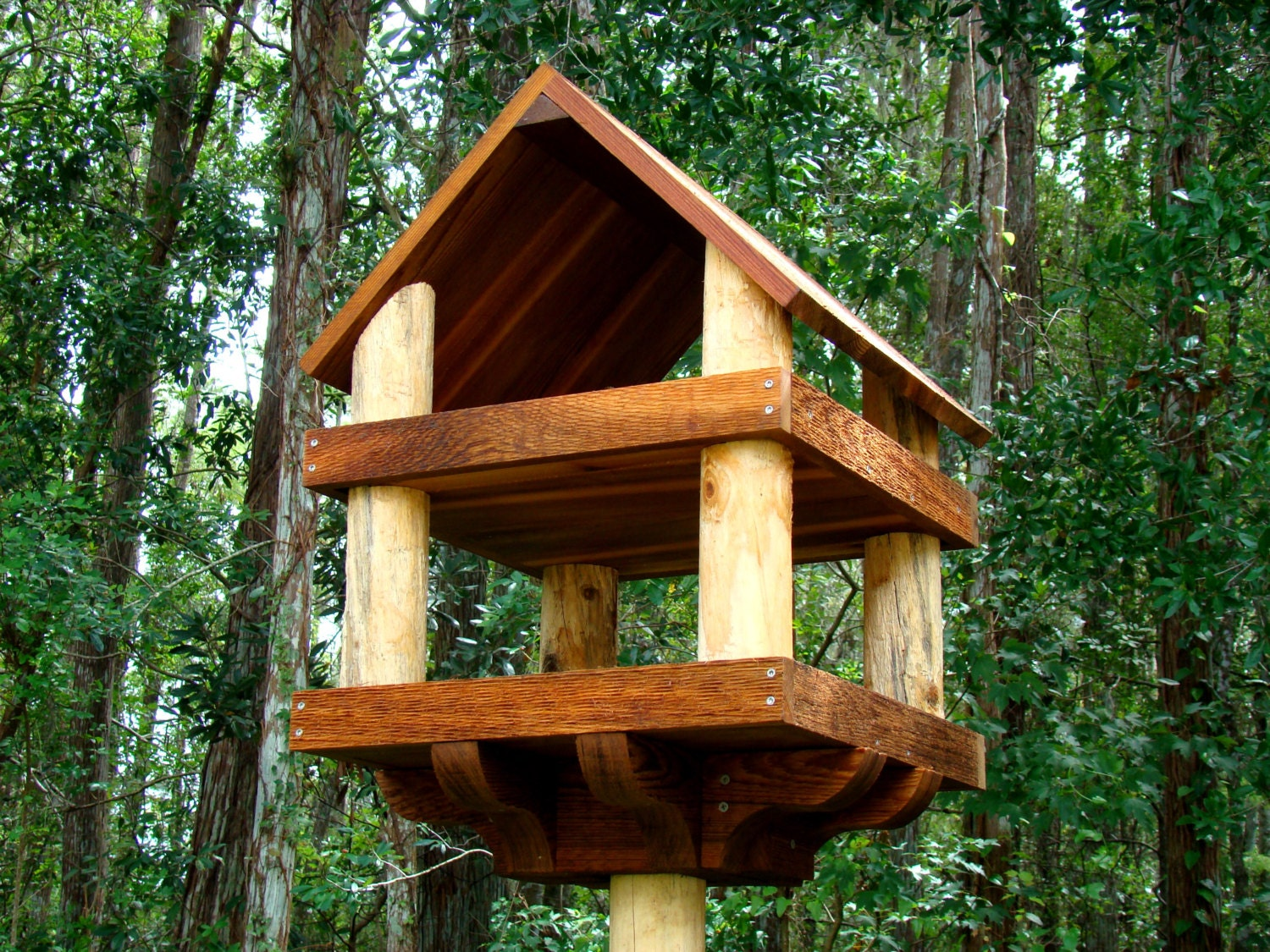 large bird feeders large bird feeders fly through. Black Bedroom Furniture Sets. Home Design Ideas