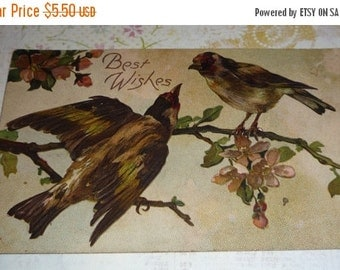 on sale Lovely Birds Sitting on Branches in Blossom