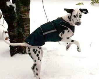 Winter Dog Coat - Dog jacket with underbelly protection - Winter coat - Custom made Dog Raincoat - Custom made for your dog